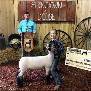 Schmillen Show Lambs - Winners